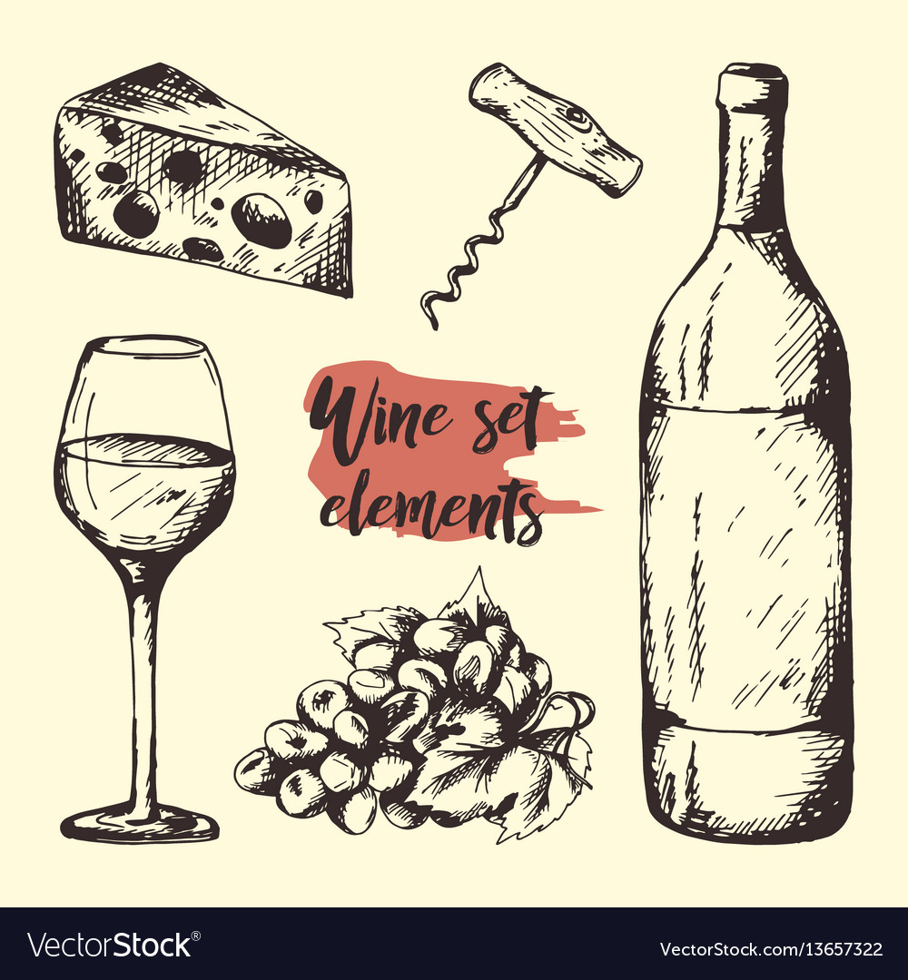 Creative sketch of graphic wine elements