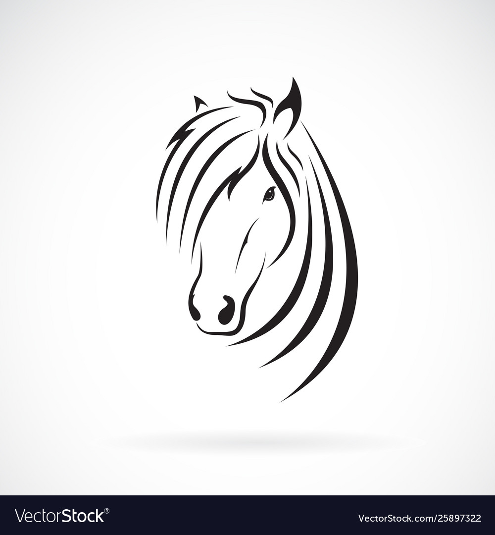 Horse head design on a white background wild vector