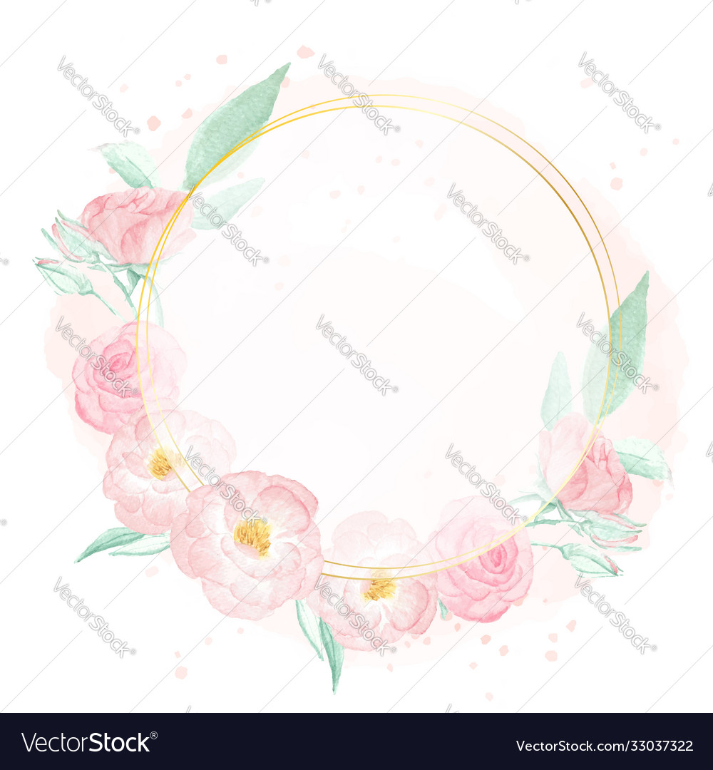 Watercolor pink wild rose with golden frame vector