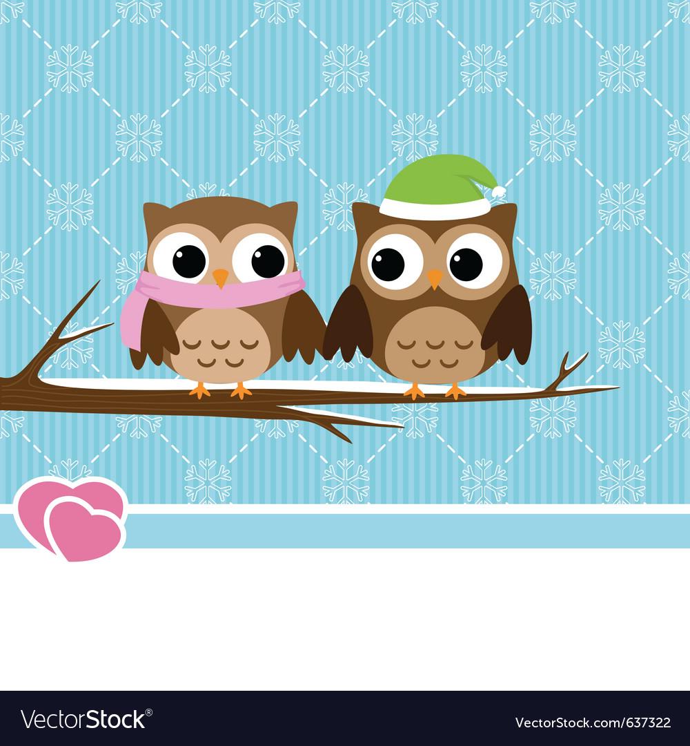 Winter owl couple vector image
