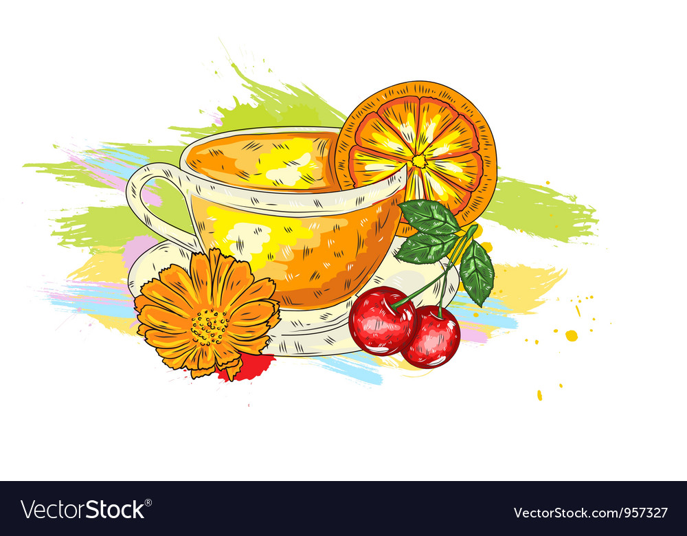 Fruits with colorful splashes vector image