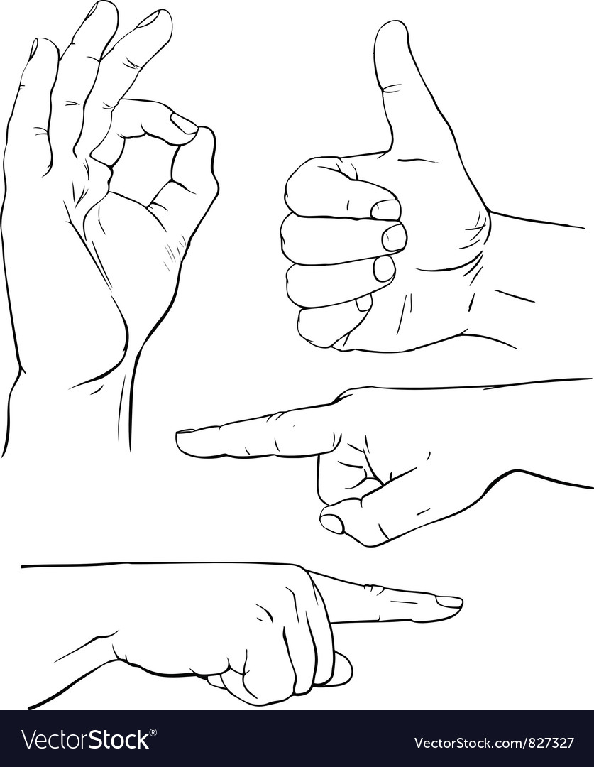 various poses of human hands royalty free vector image