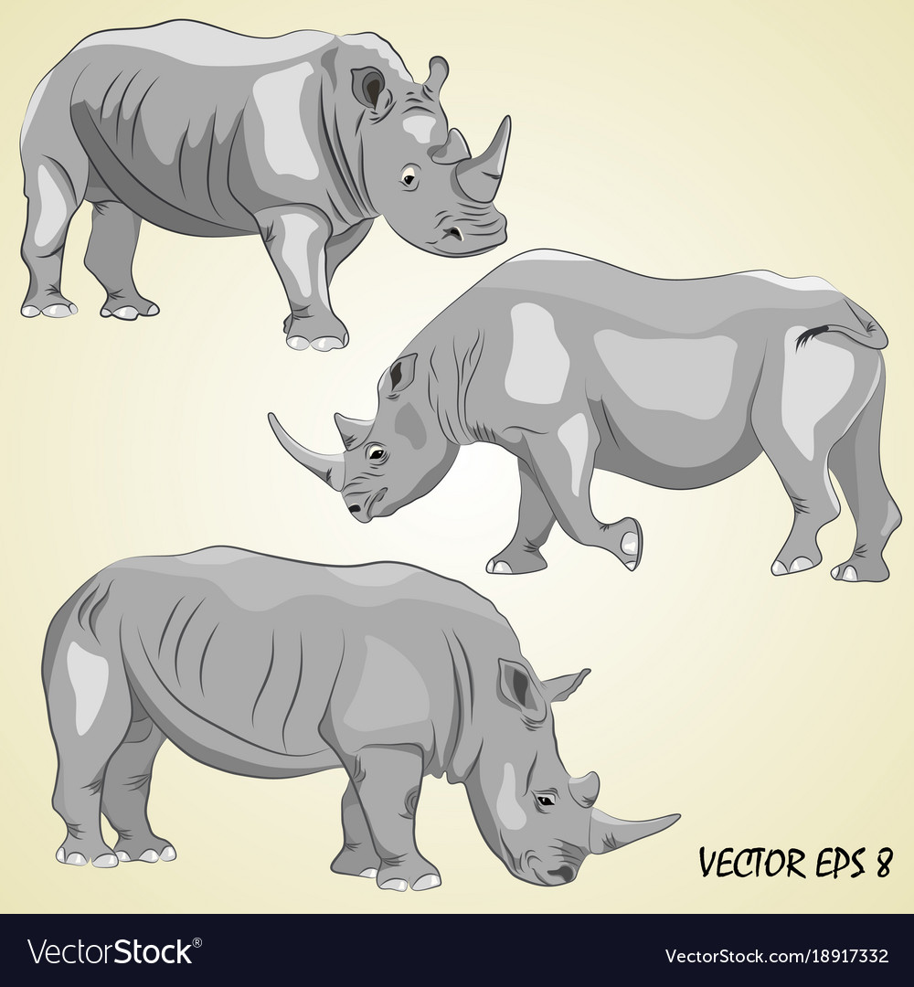 A set of realistic rhinos isolated on a light be