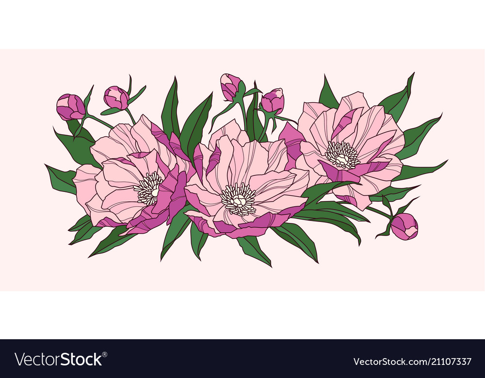 Composition of pink peony flowers