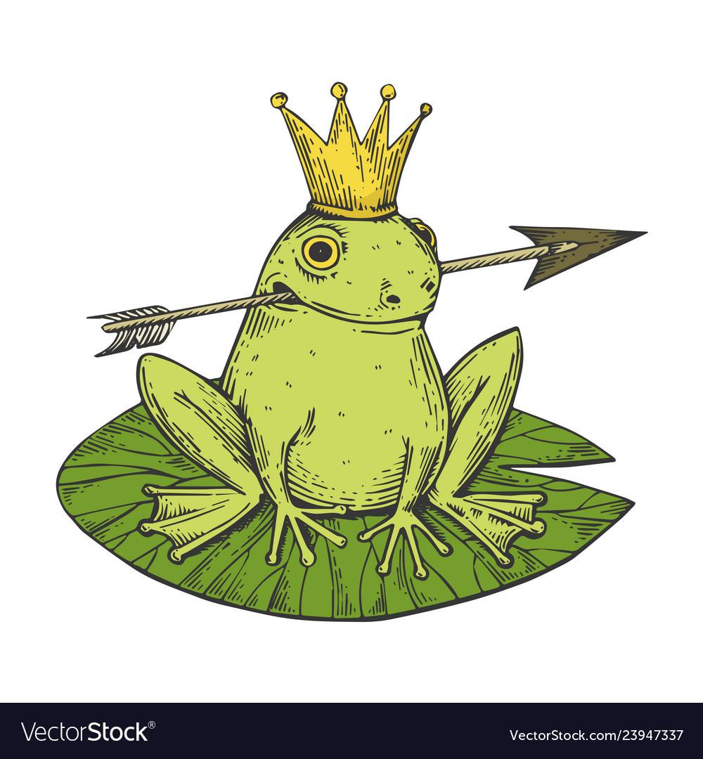Princess frog color sketch engraving
