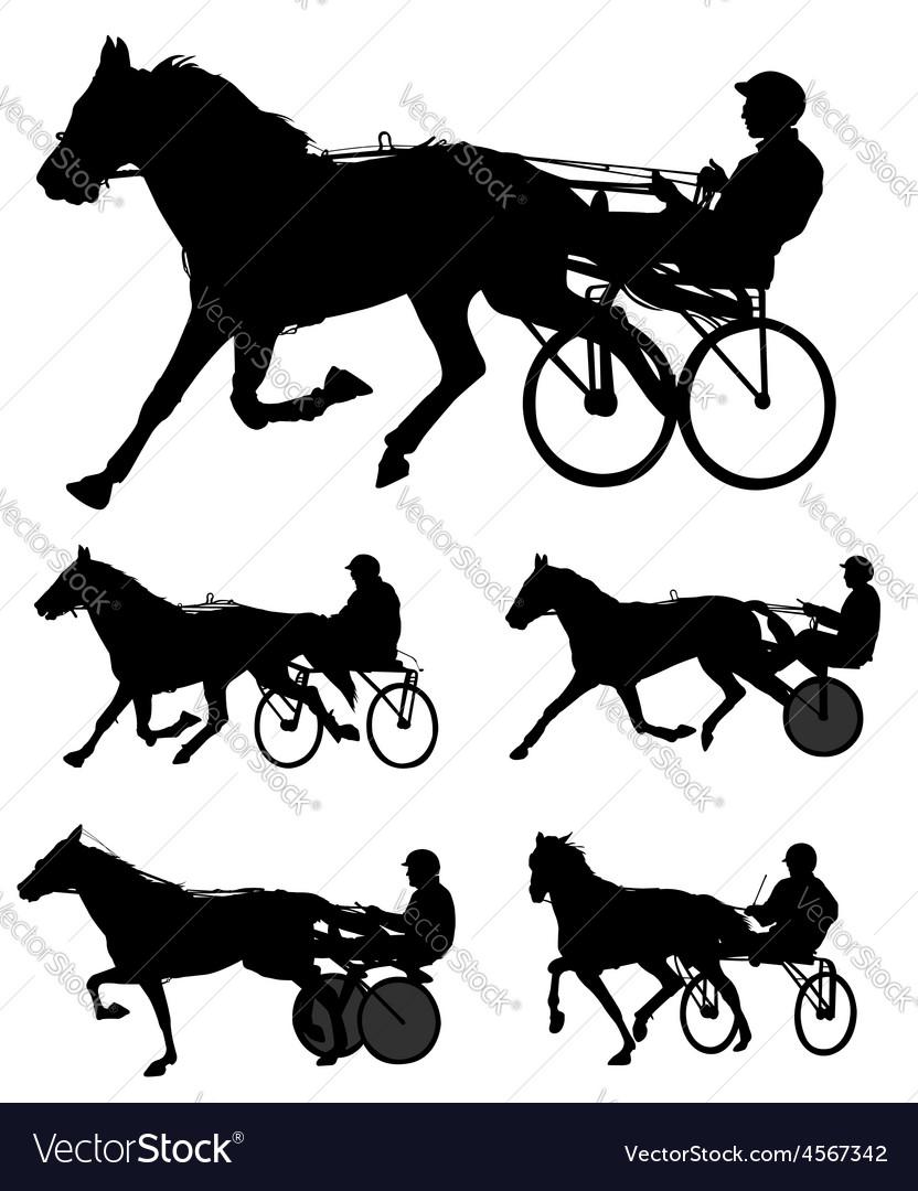 Harness racing vector image