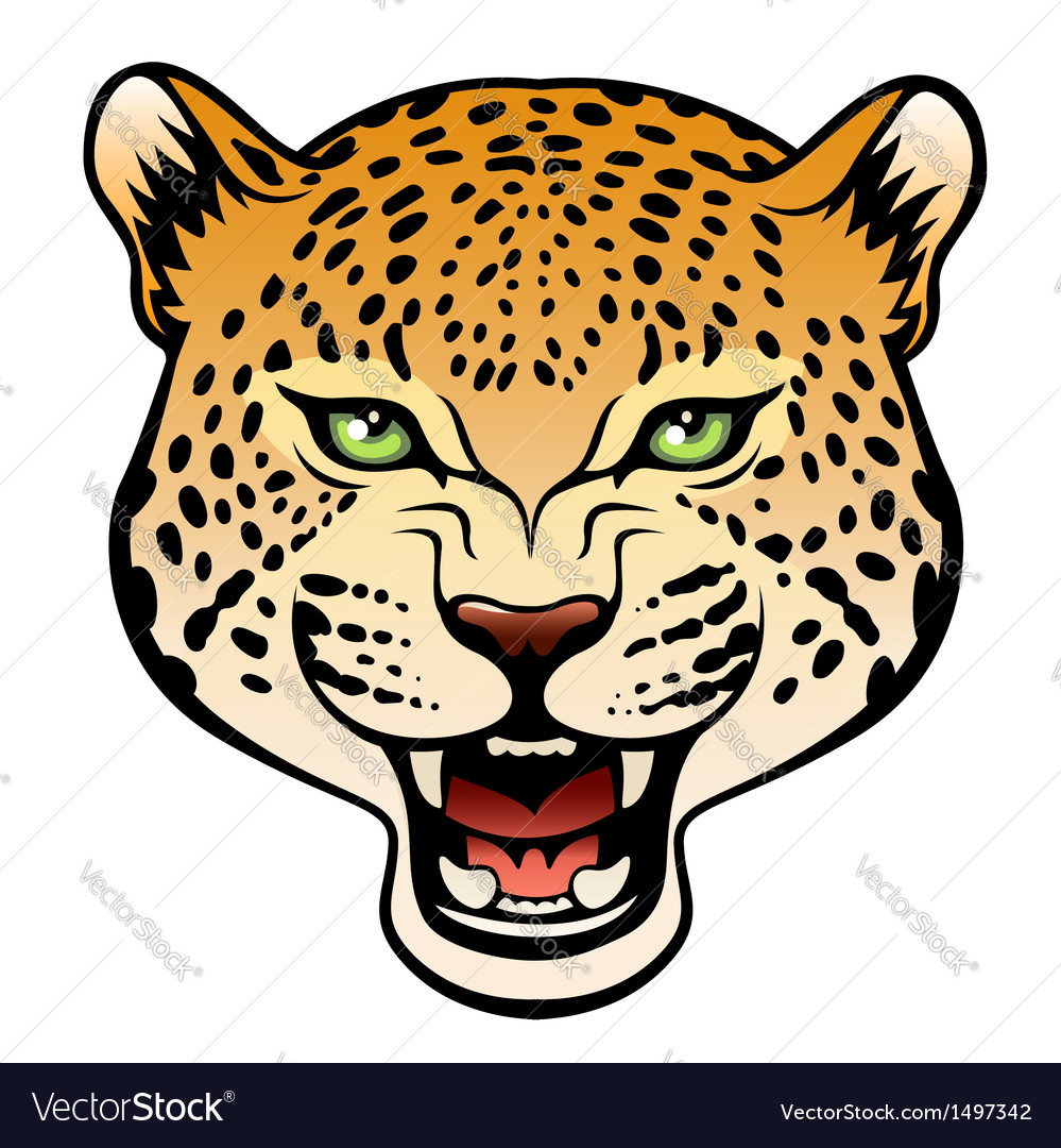 ad7fd673b Tribal leopard color Royalty Free Vector Image