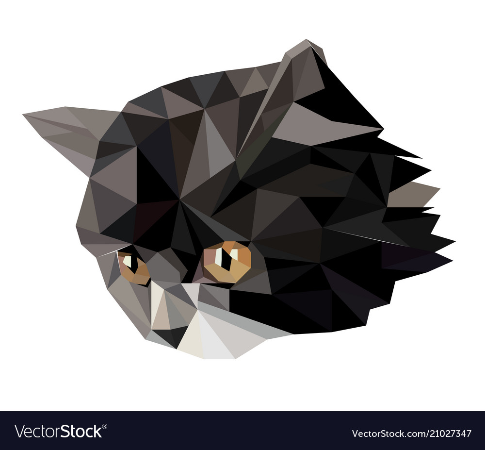 Cat in polygon style vector image
