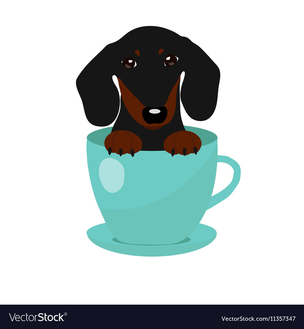 Cute Dachshund dog in blue teacup