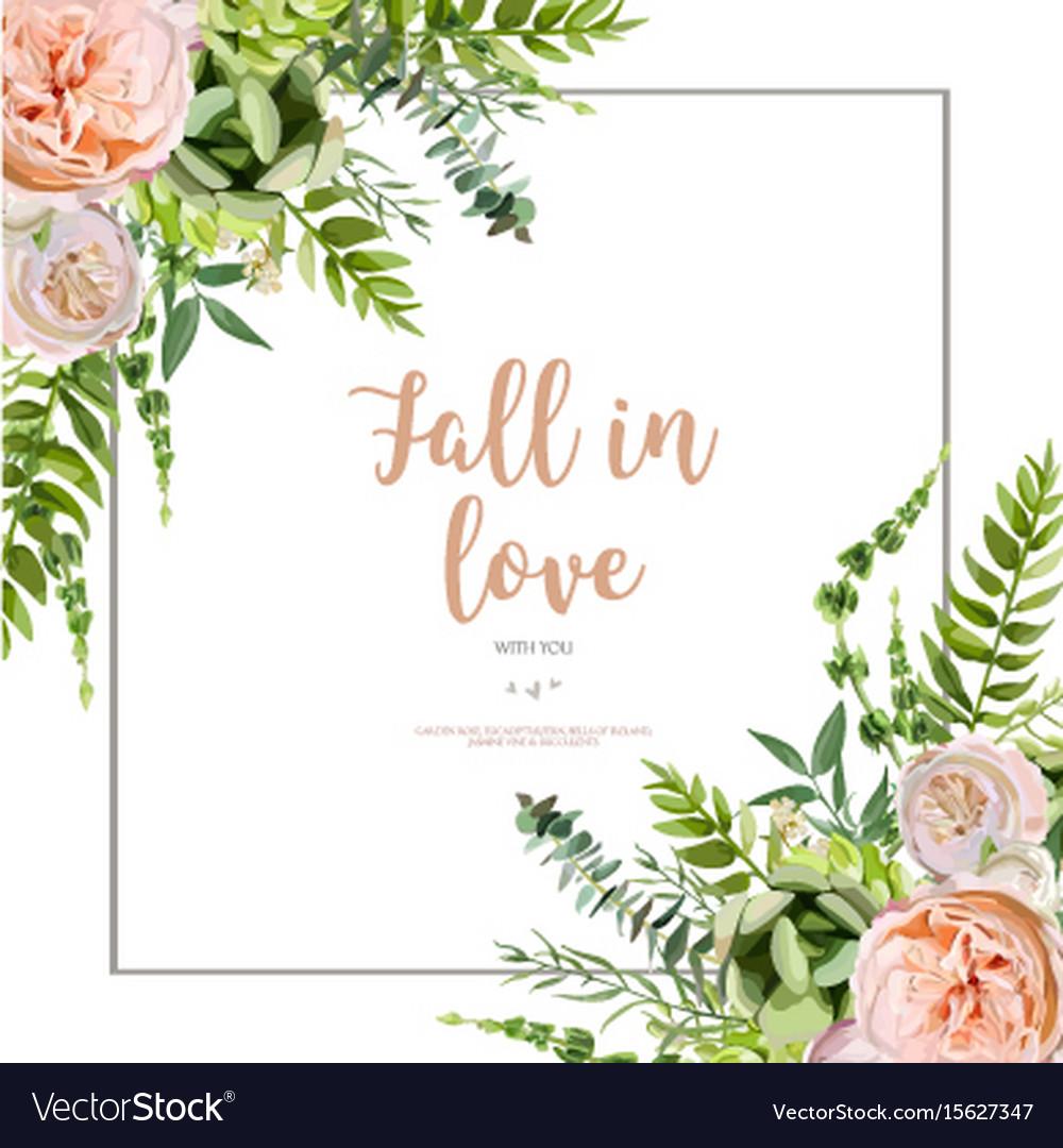 Floral design vertical card design succulent vector image