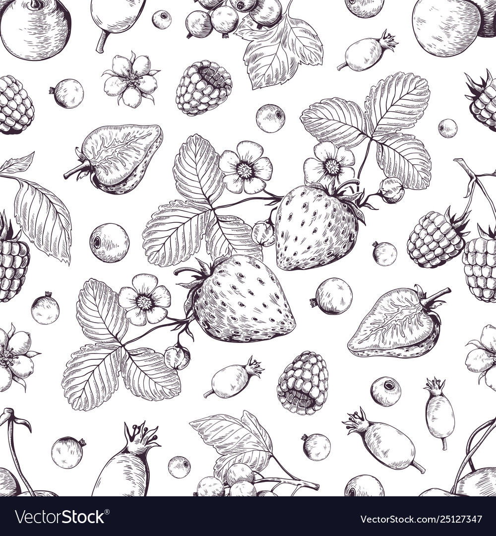 Hand drawn berries pattern vintage forest cherry