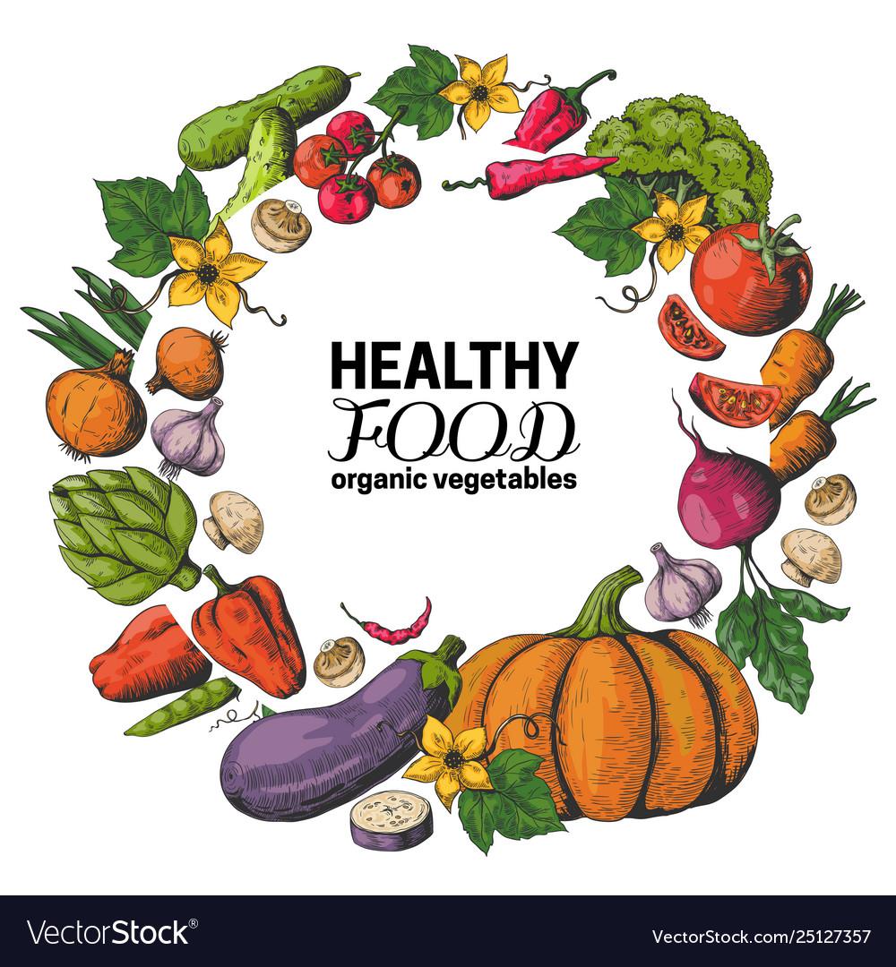 Hand drawn vegetables frame fresh organic food