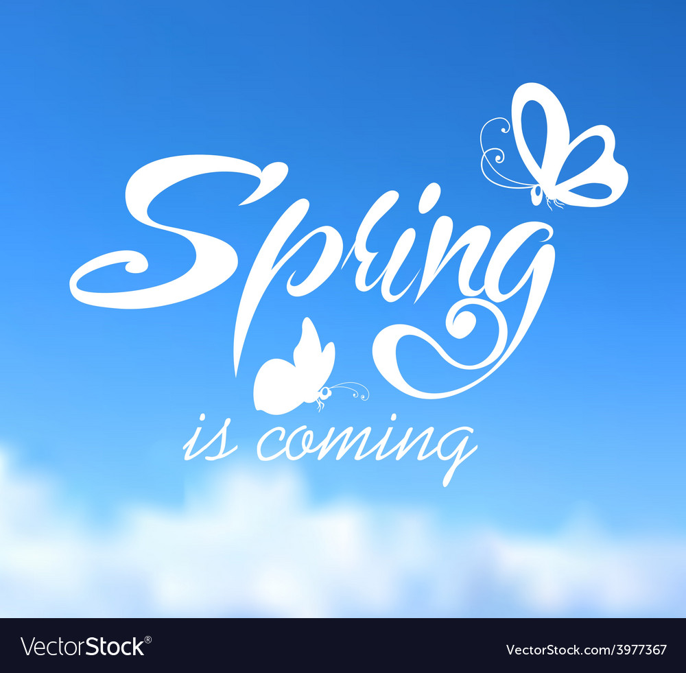Typographic Design Lettering Spring design on vector image