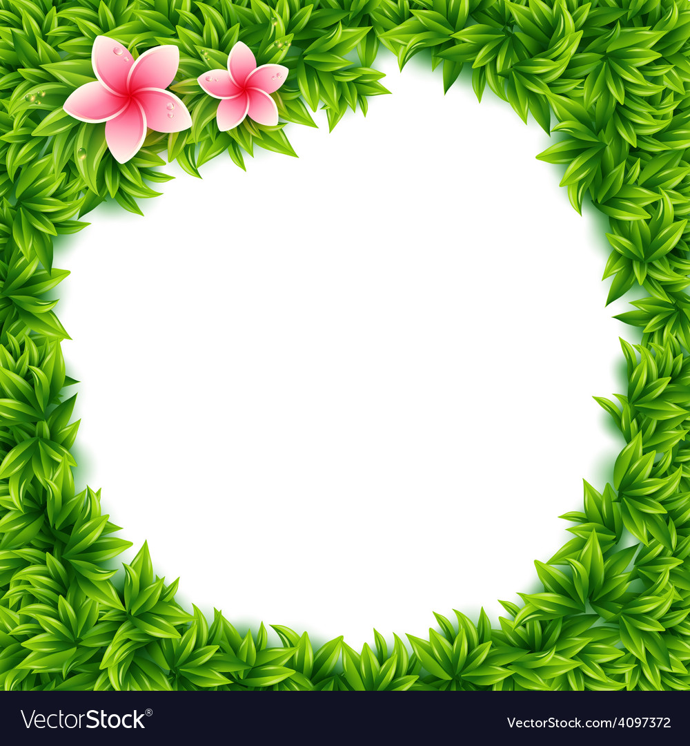 Fresh green leaves and tropical flowers frame Vector Image