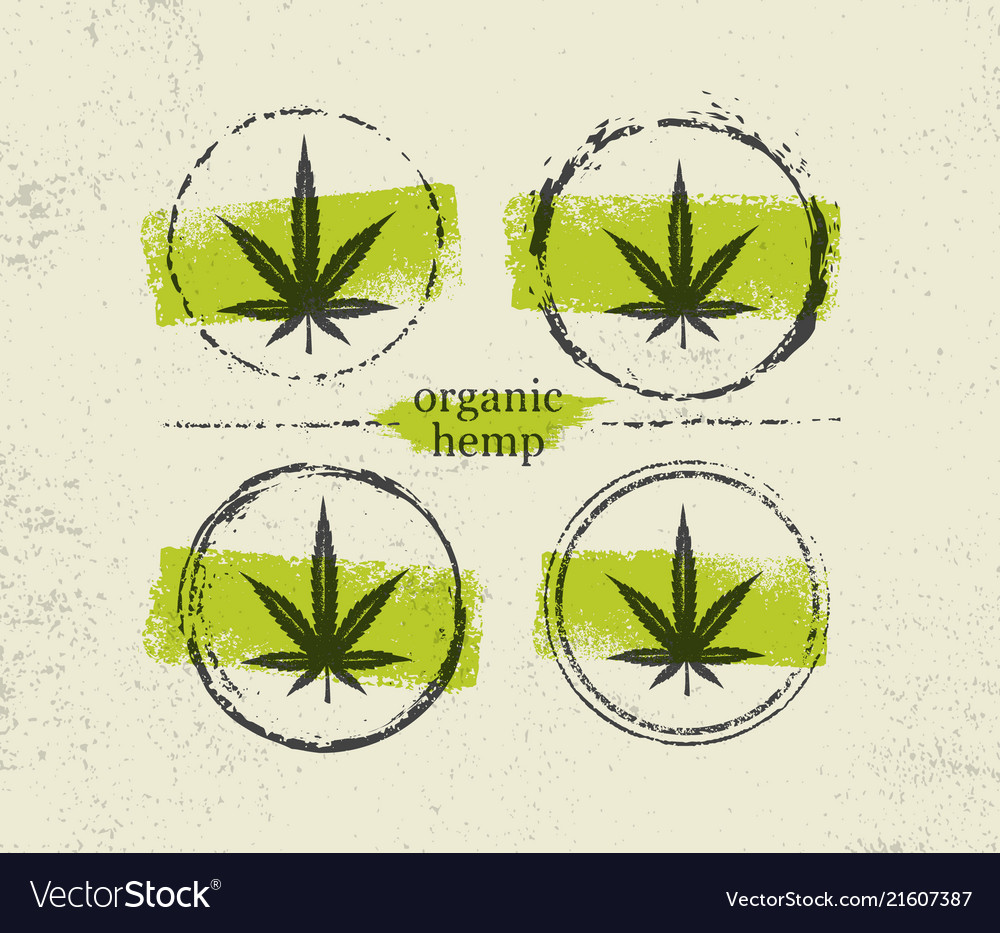 Organic hemp farm raw protein supplement health