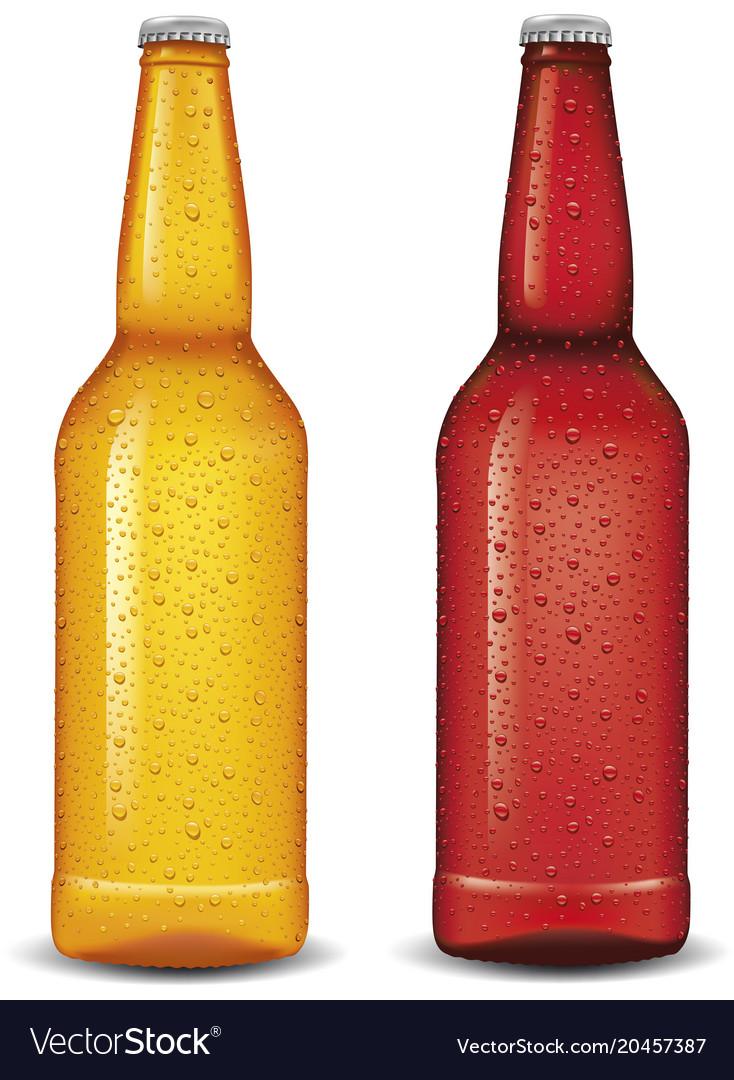 Set of glass beer cider bottles isolated