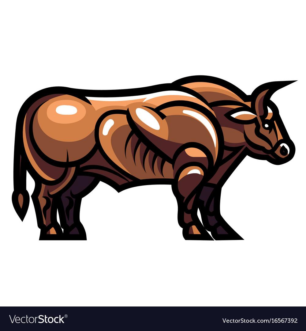 Standing ultra muscular bull