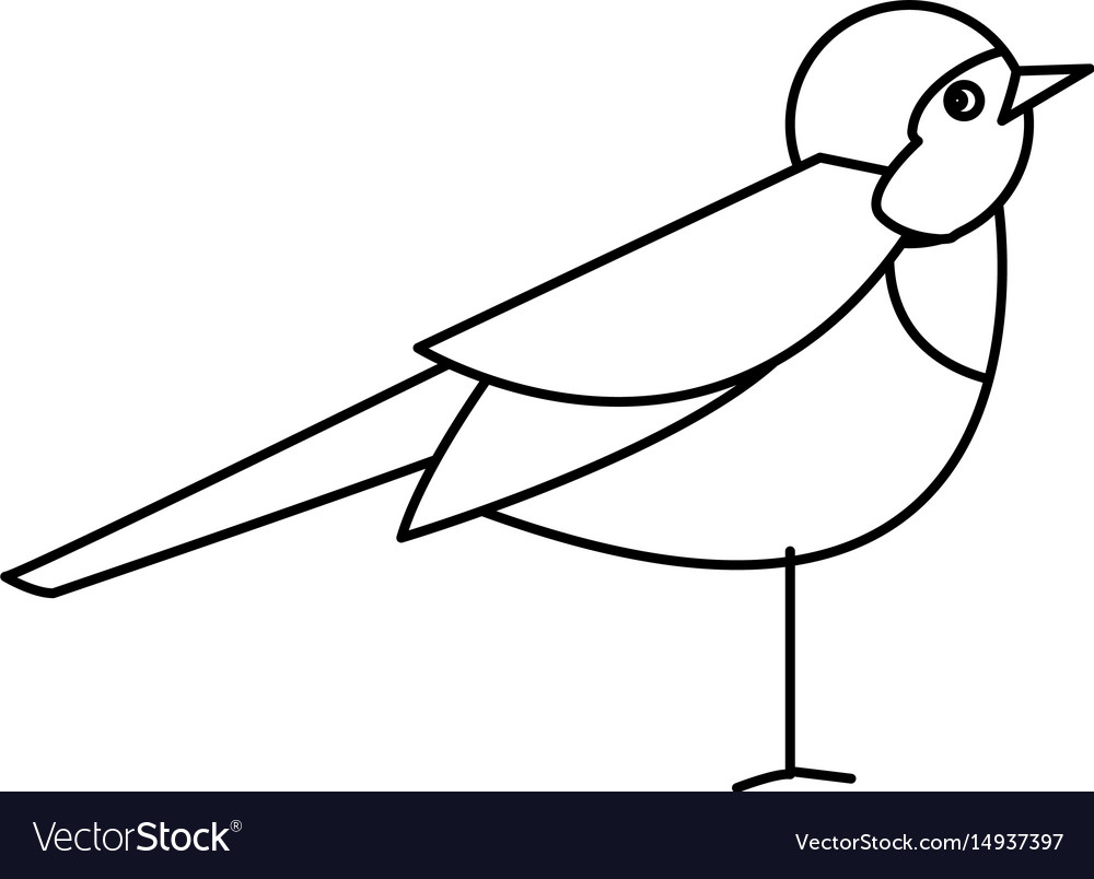 Bird nature animal flight wildlife image vector image