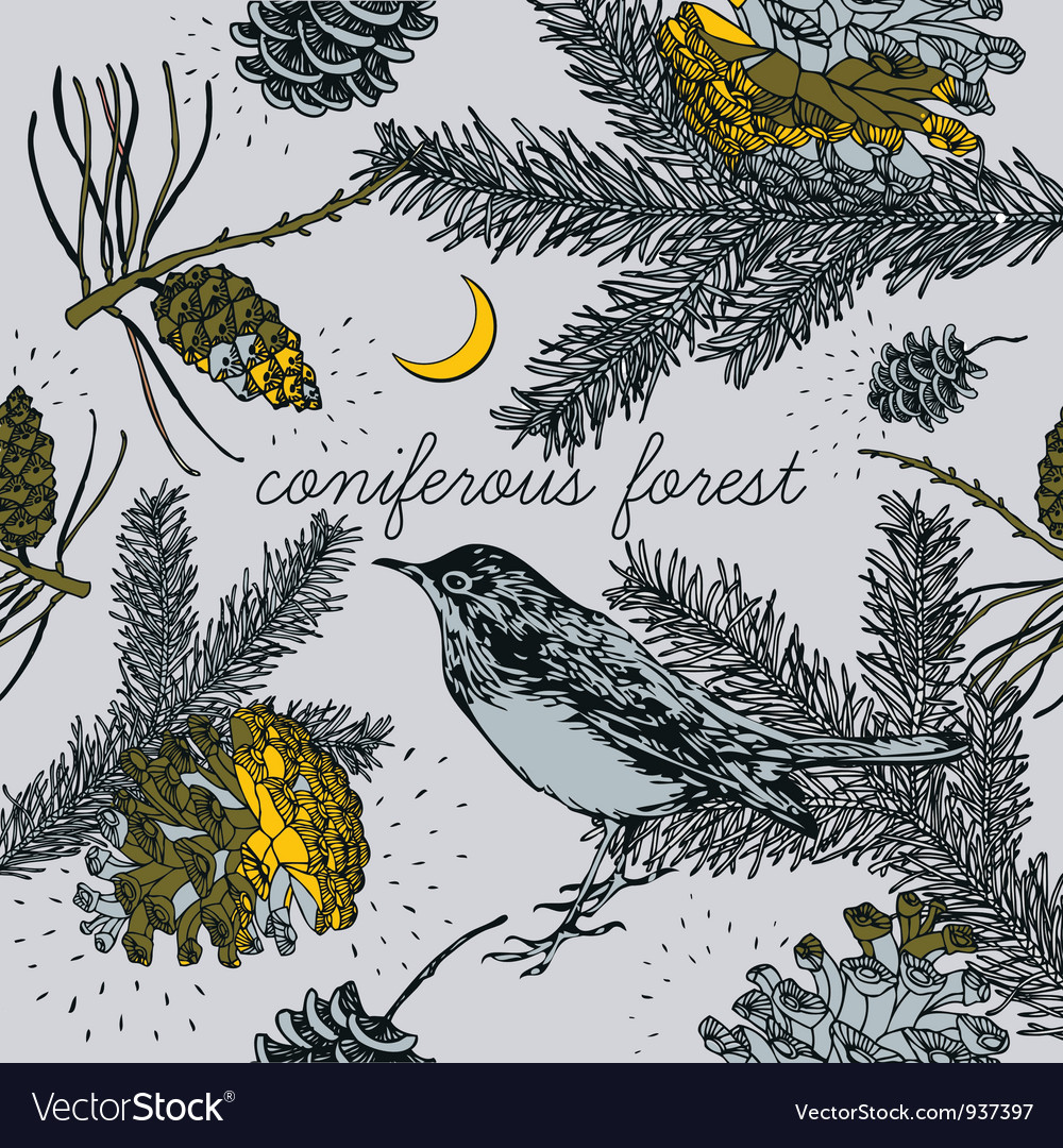 Coniferous Forest Birds Pattern vector image