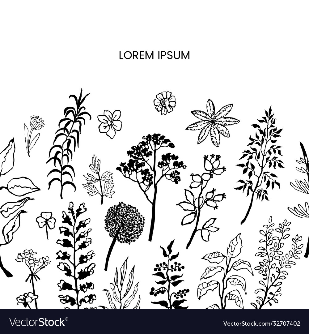 Floral template with plants and flowers