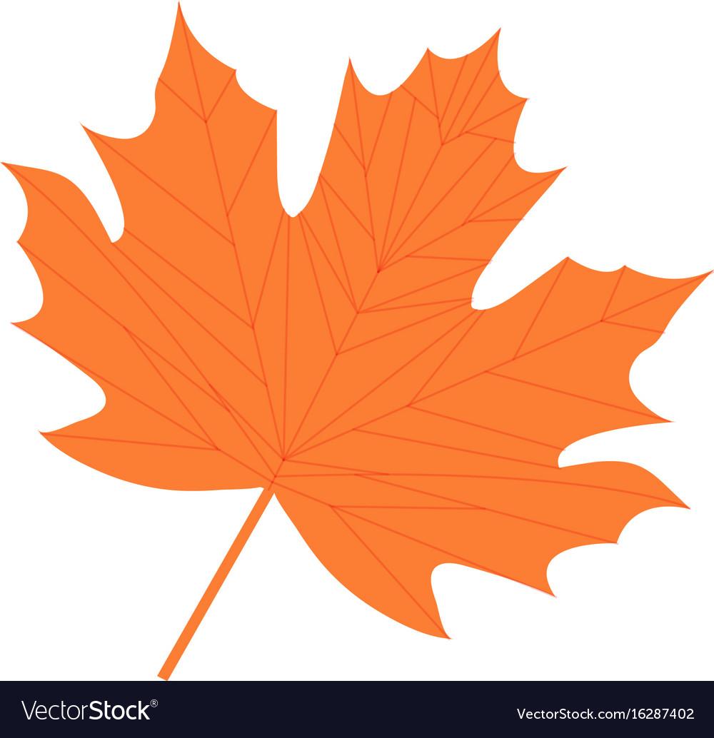 Maple leaf icon flat cartoon style isolated on vector image