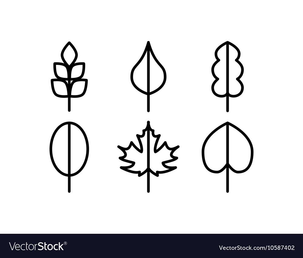 Thin line tree leaf icons
