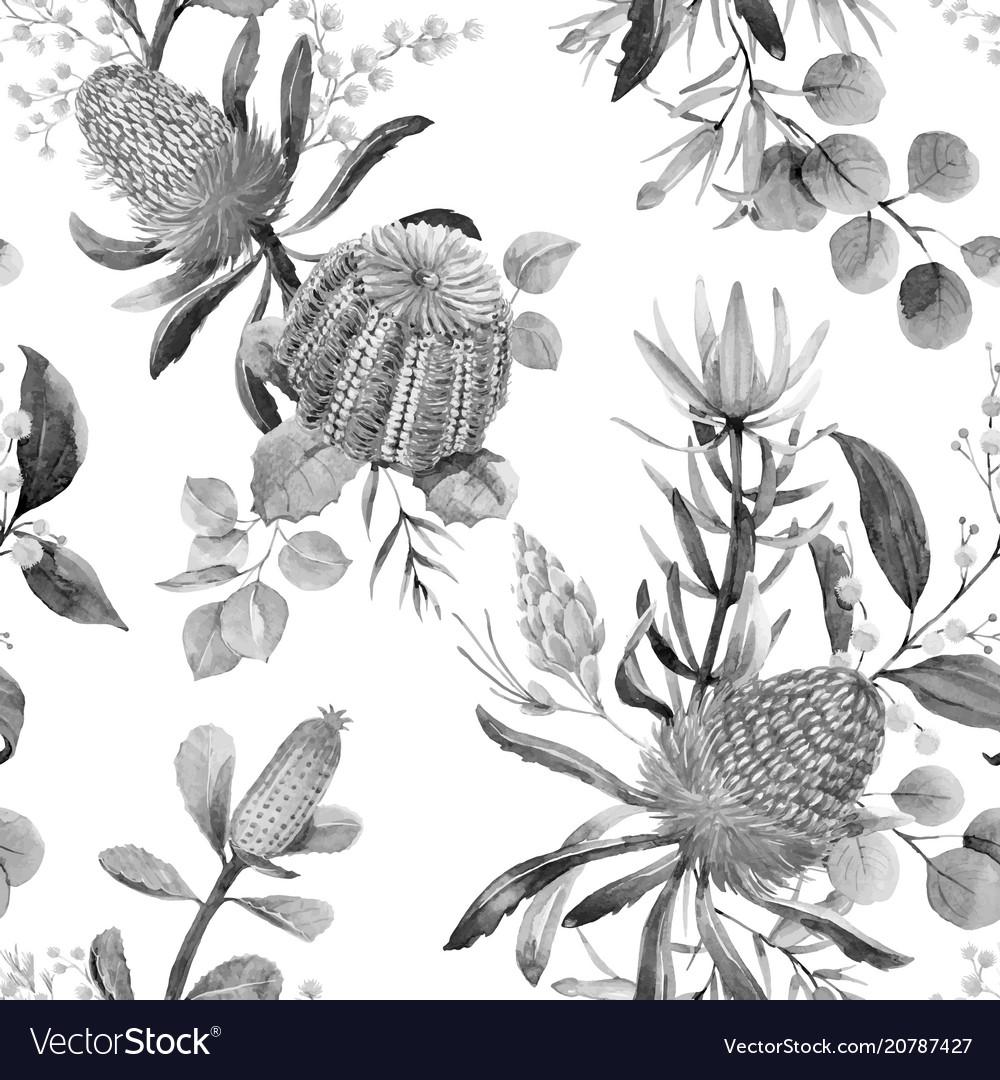 Watercolor australian banksia pattern