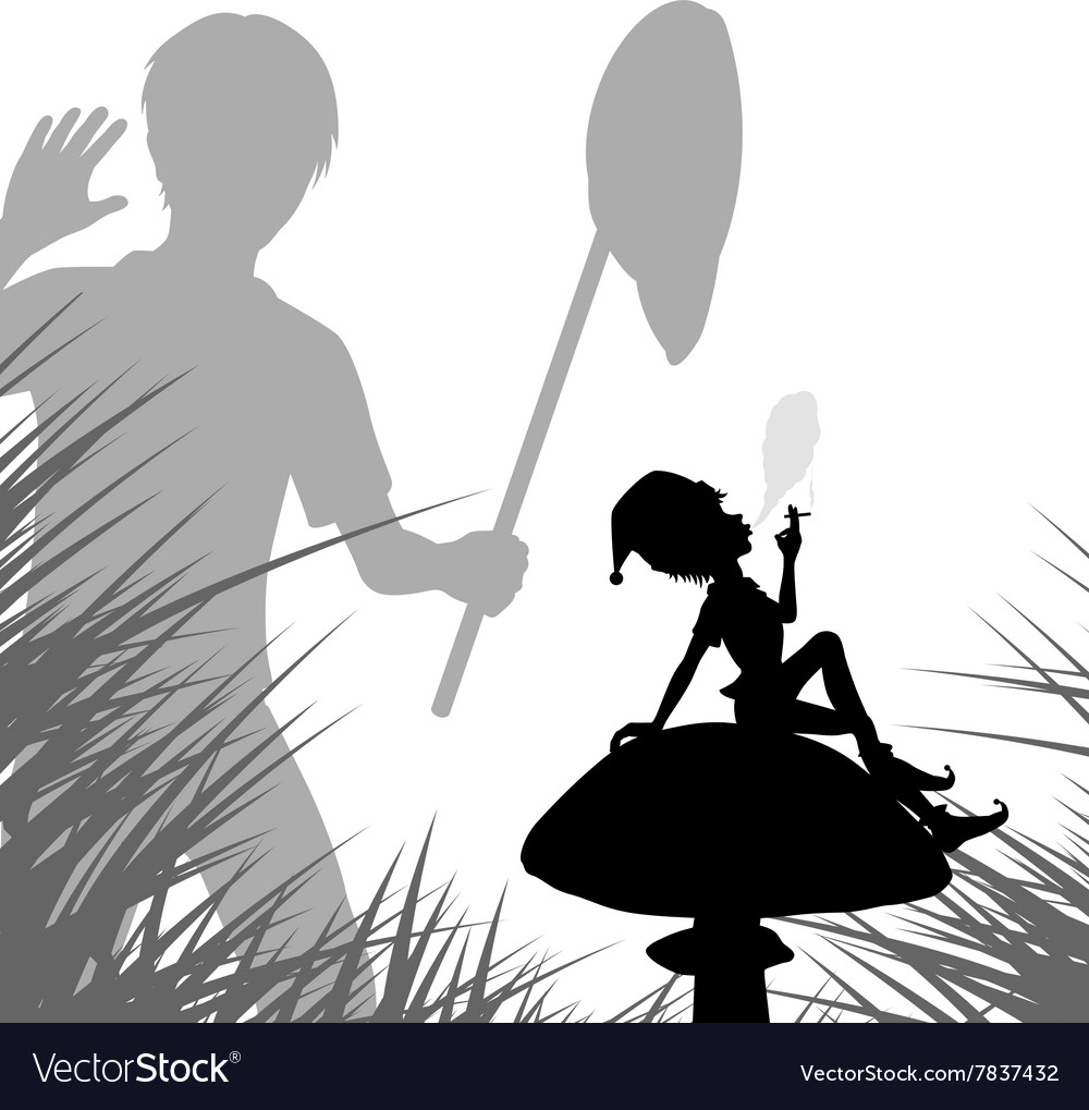 Pixie discovery vector image