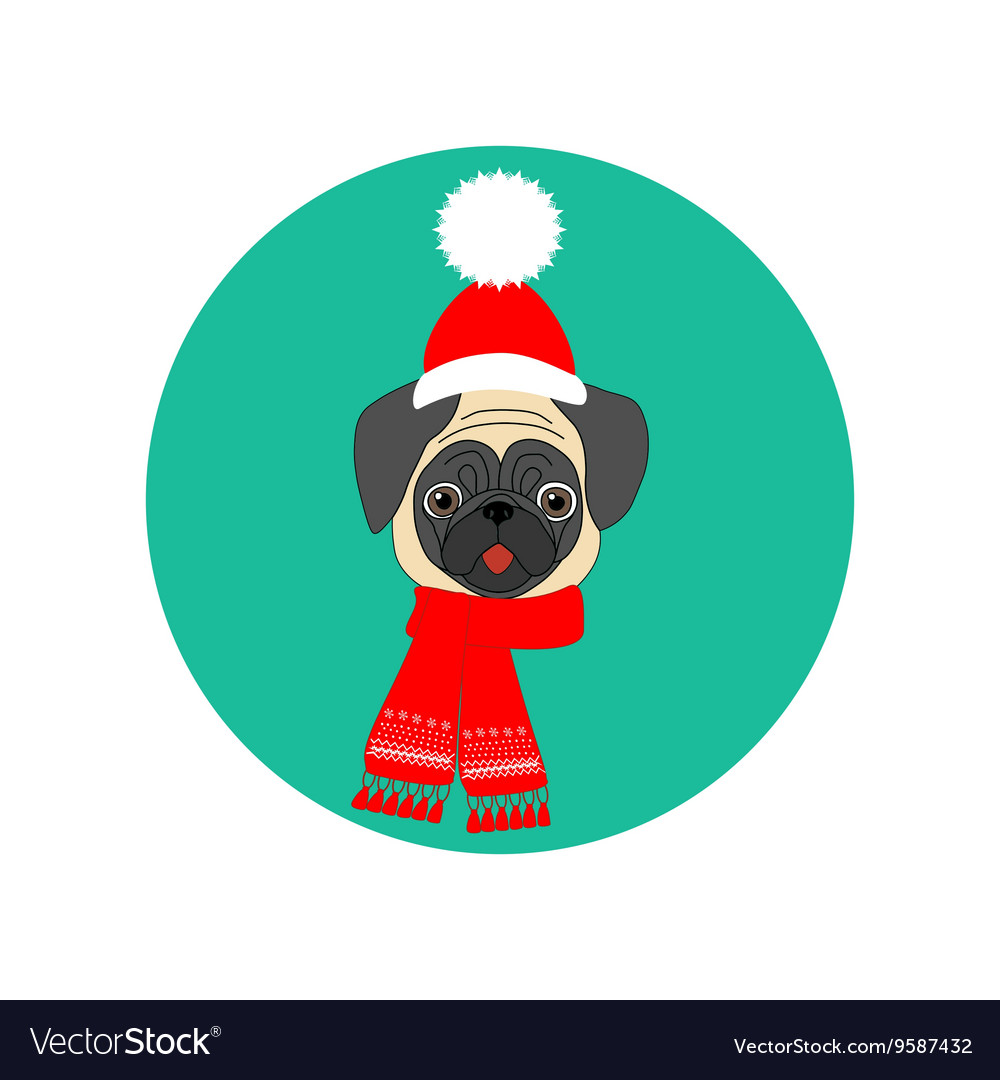 Pug with hat and scarf Royalty Free Vector Image 4d72715d8bc