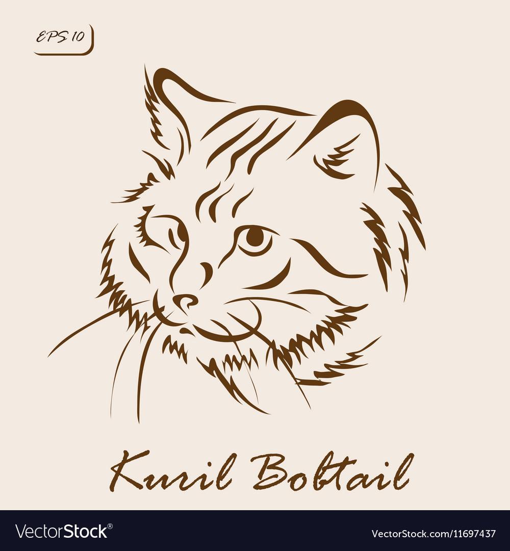 Kuril Bobtail vector image