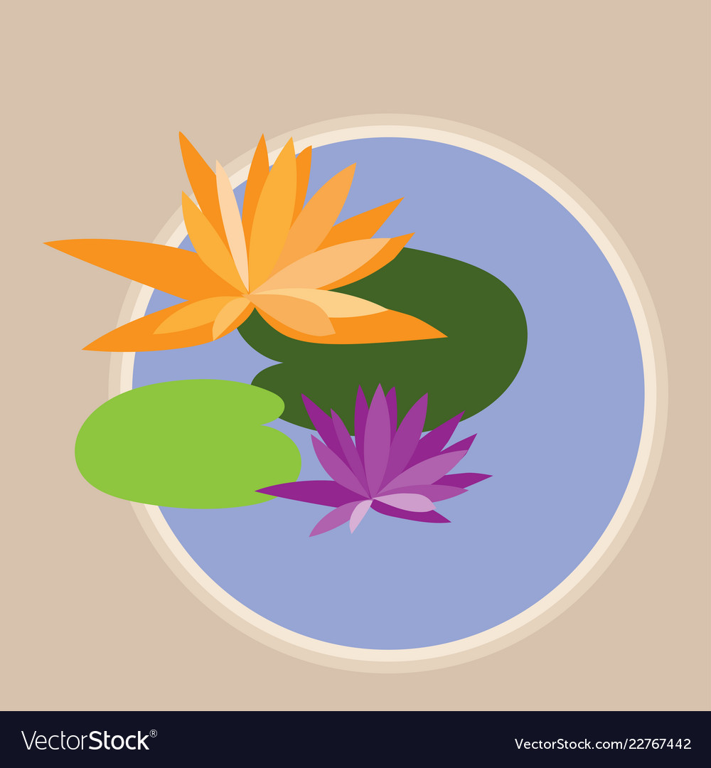 Abstract lotus flowers and leaves in pond