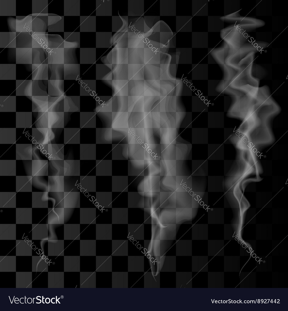 Smoke Set Smoke Waves on Transparent Background vector image
