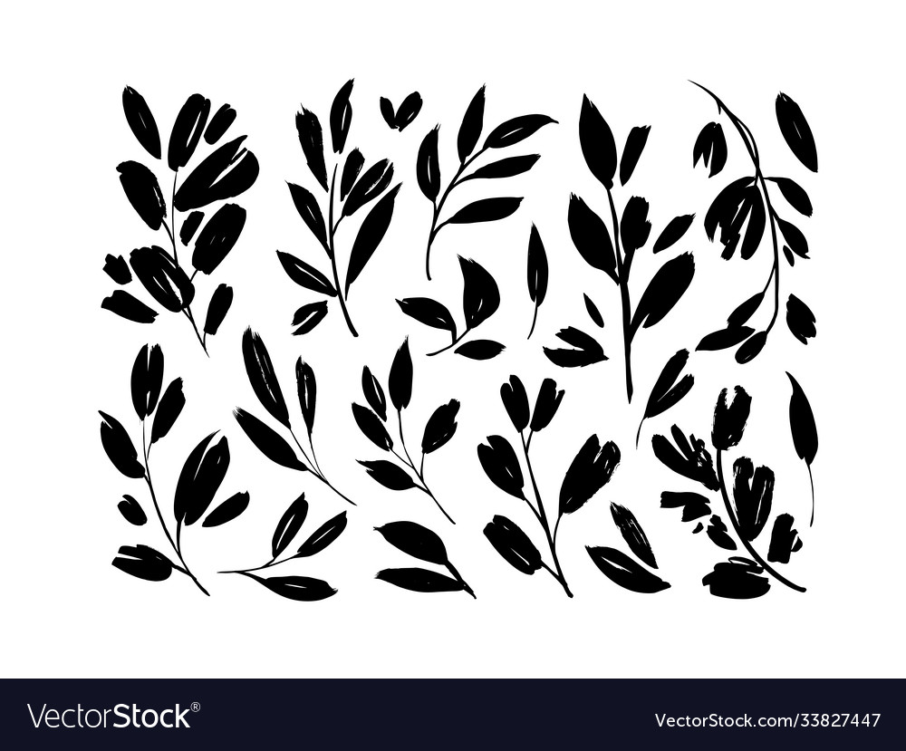 Plant branches with leaves