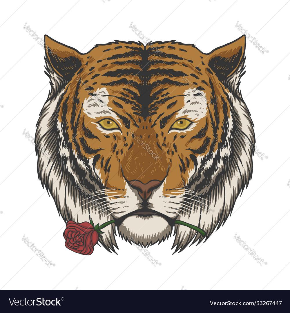Tiger biting rose