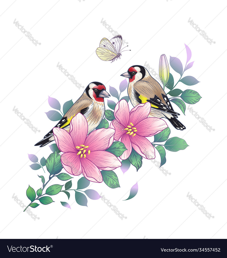 Hand drawn goldfinches sitting on pink flower