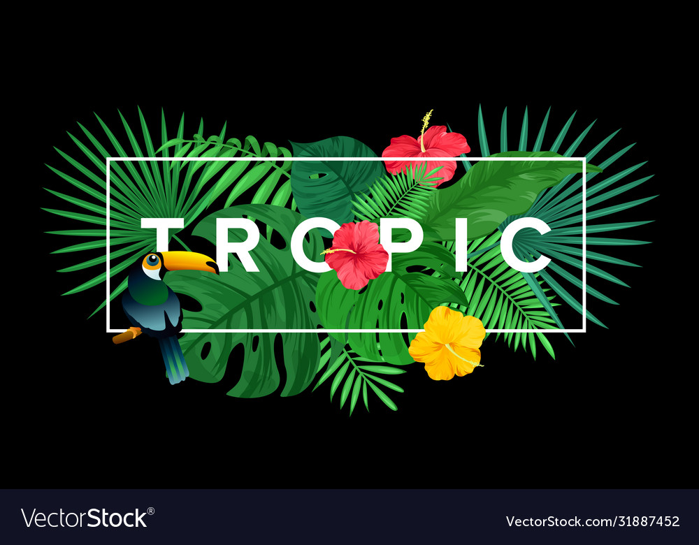 Template for tropical print