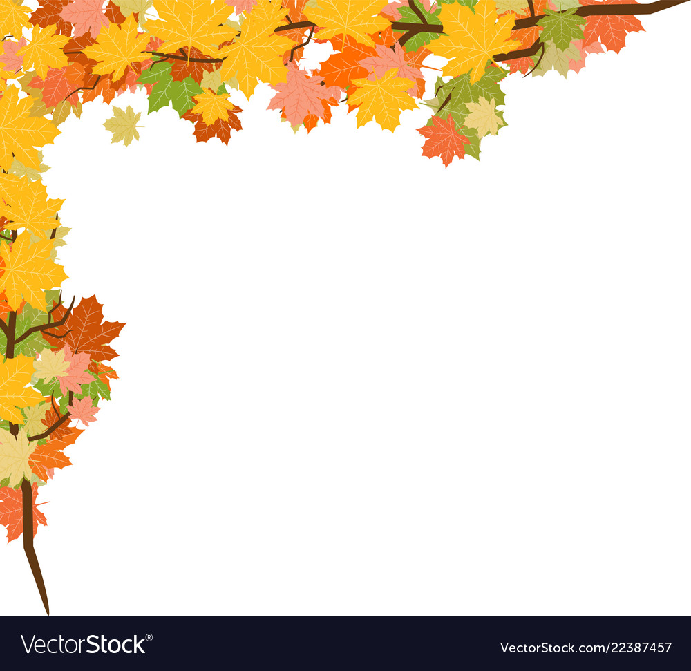 Autumn leaves background with transparency red