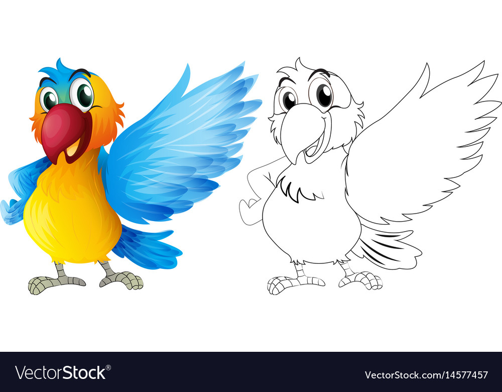 Doodle animal for macaw parrot vector