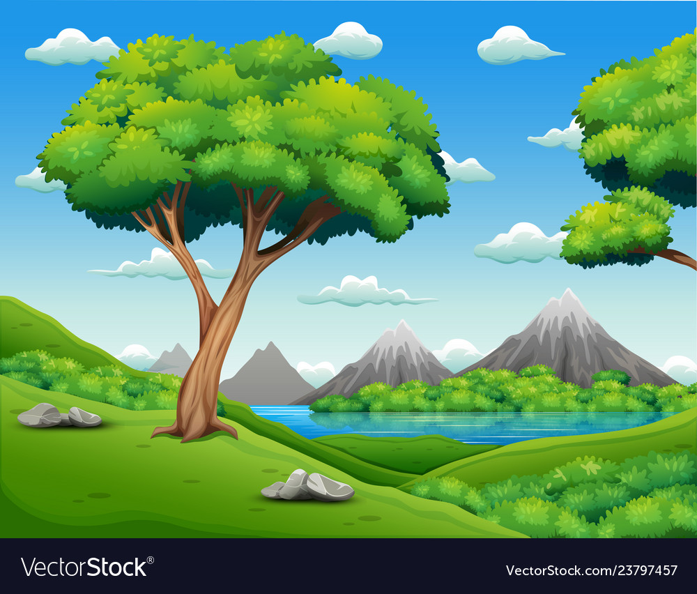 Forest landscape with beautiful nature background Vector Image