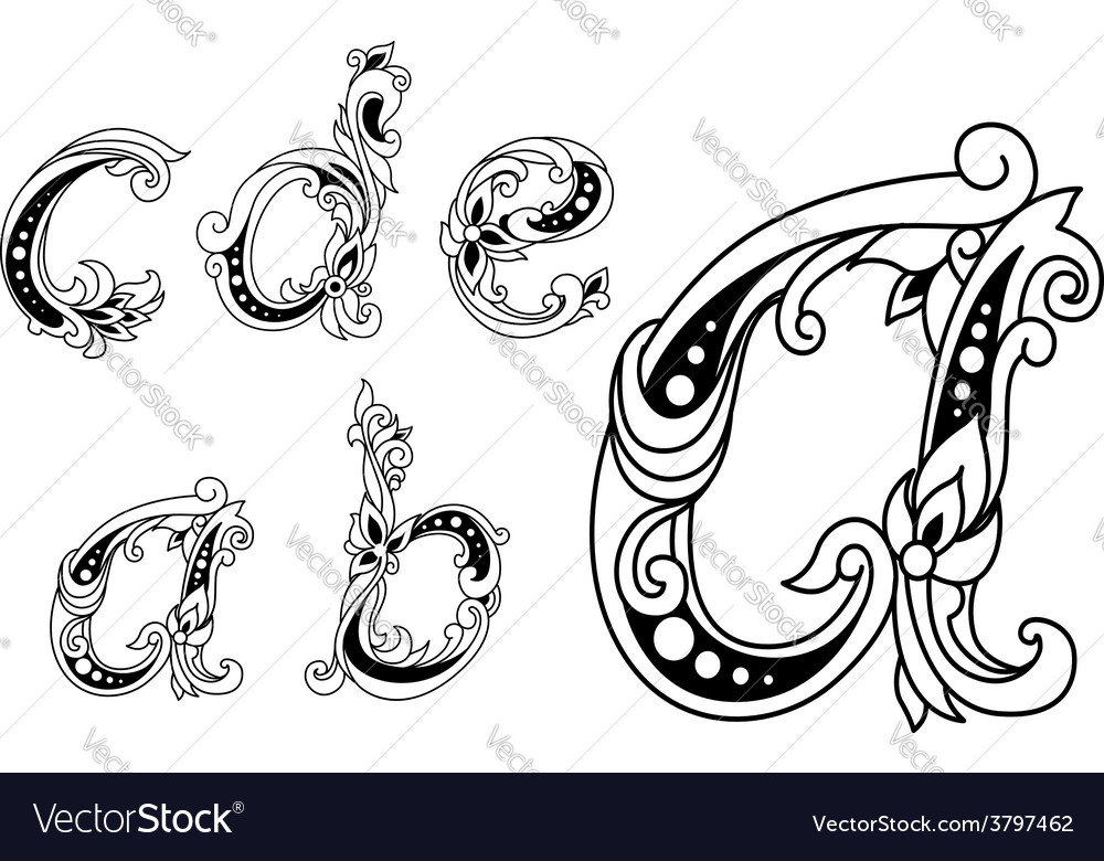 Calligraphic floral lower case alphabet letters vector image