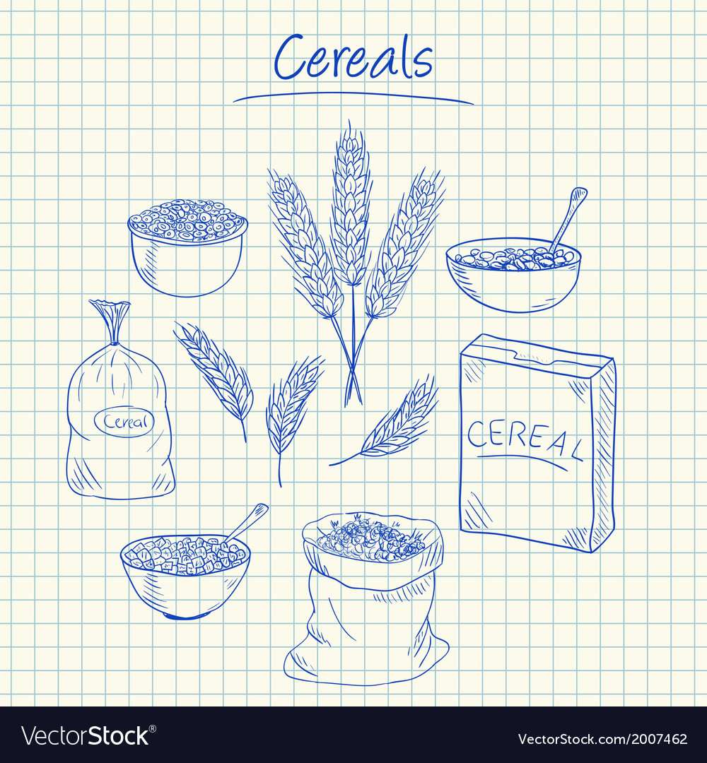Cereals doodles squared paper