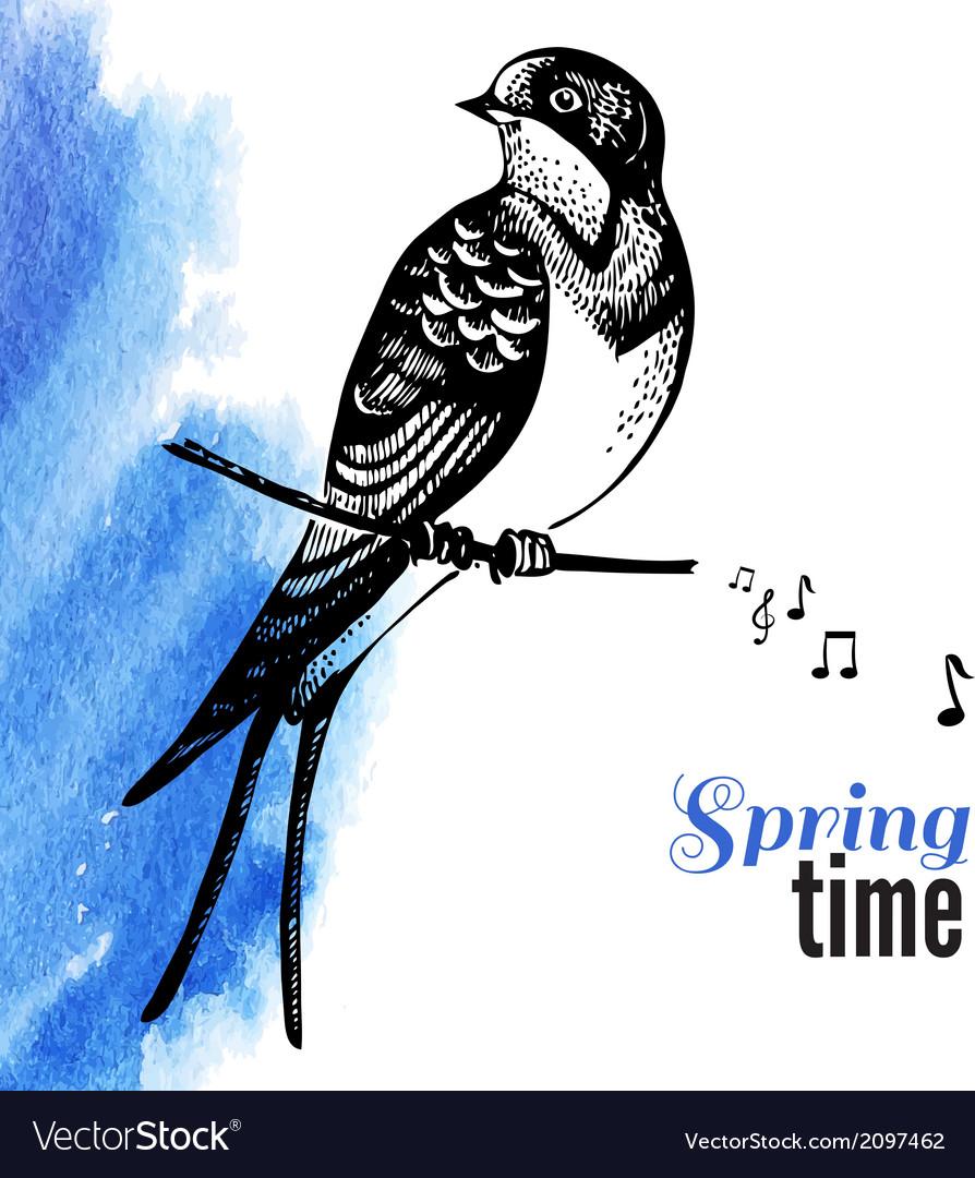 Hand drawn sketch bird
