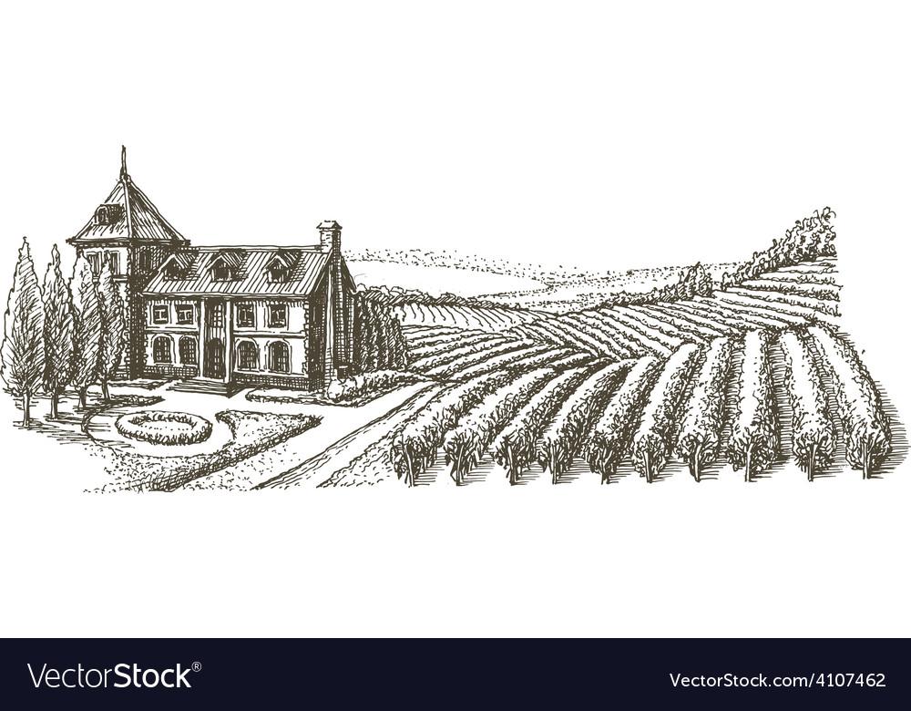 Vineyard logo design template village or