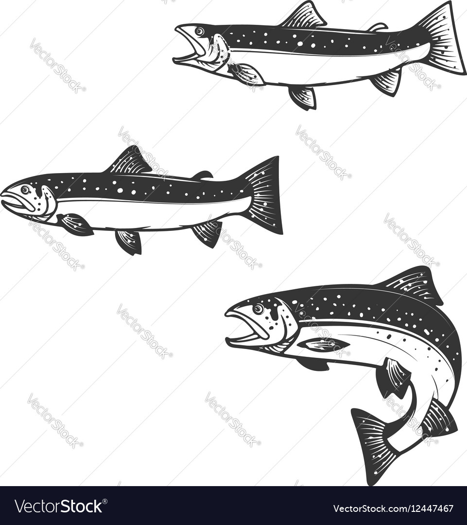 Set of trout silhouettes