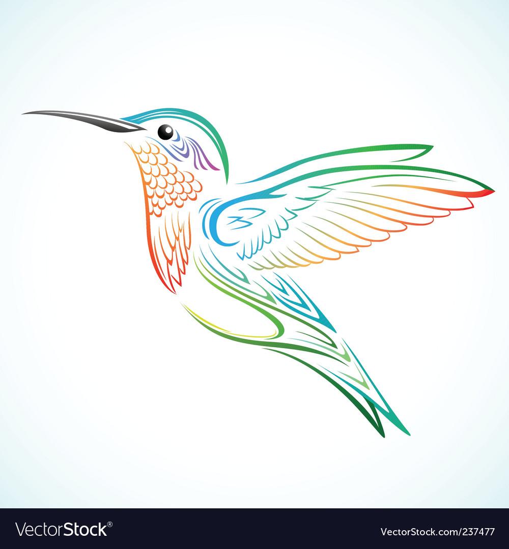 Colorful hummingbird vector image