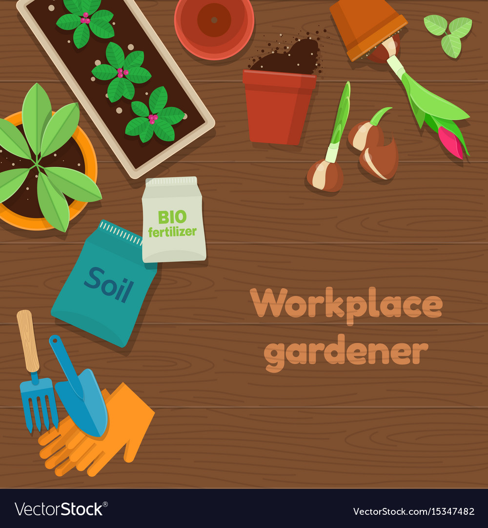 Workplace gardener and gardening tools on wooden vector image