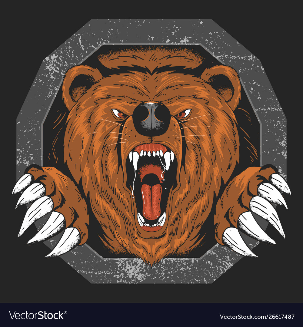 Bear grizzly angry head artwork