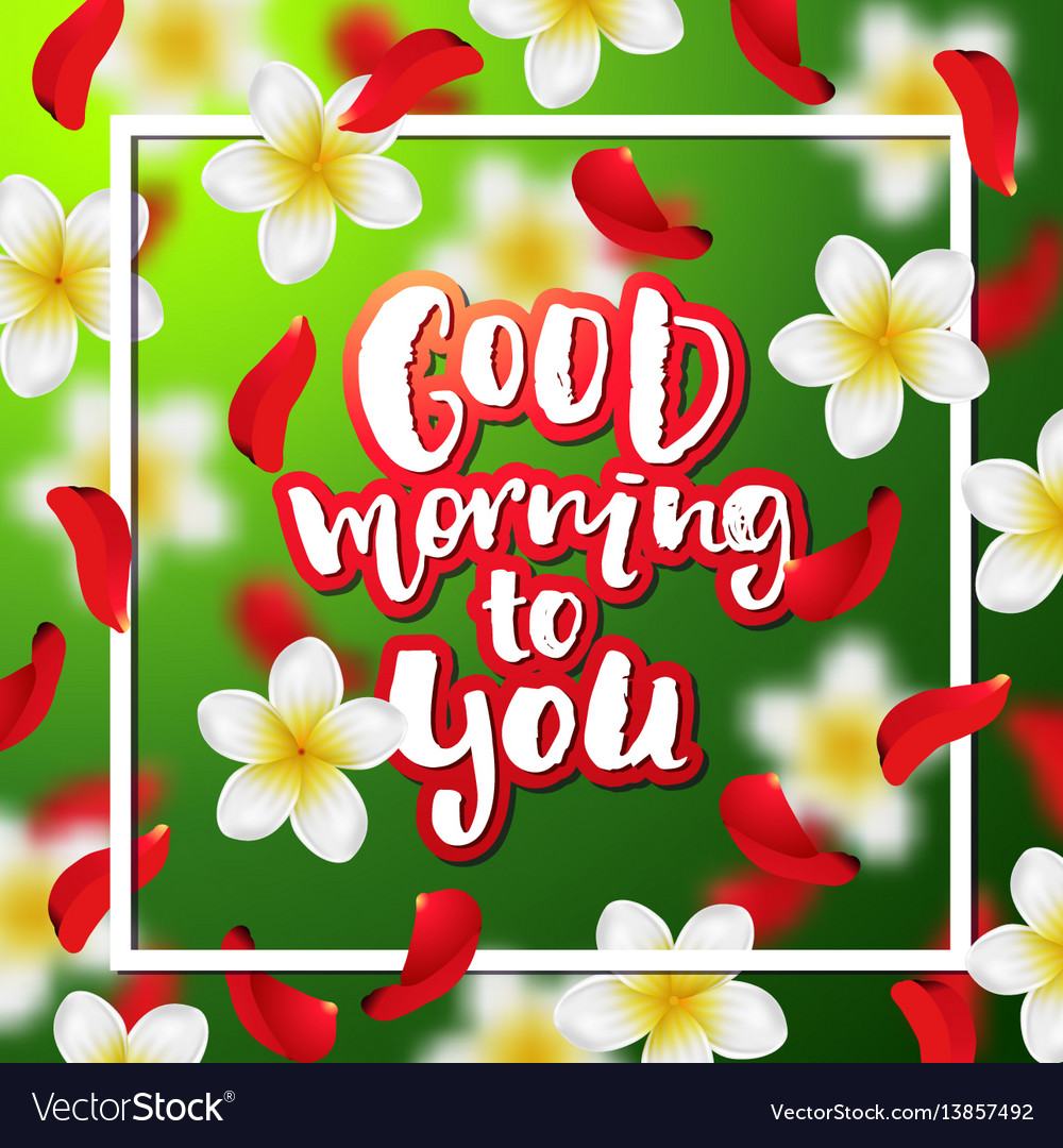 Good Morning To You Vector Images 52
