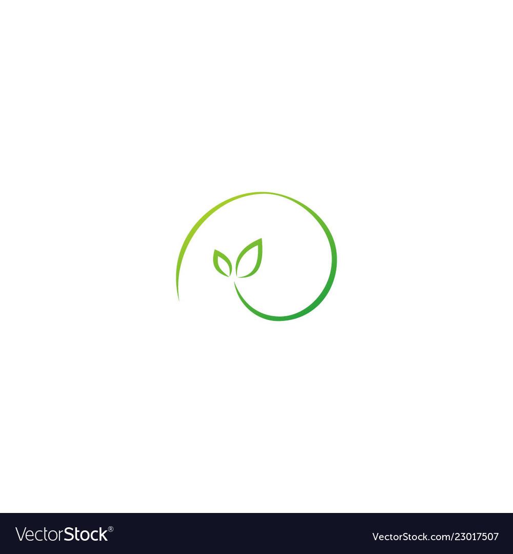 Green leaf abstract organic logo