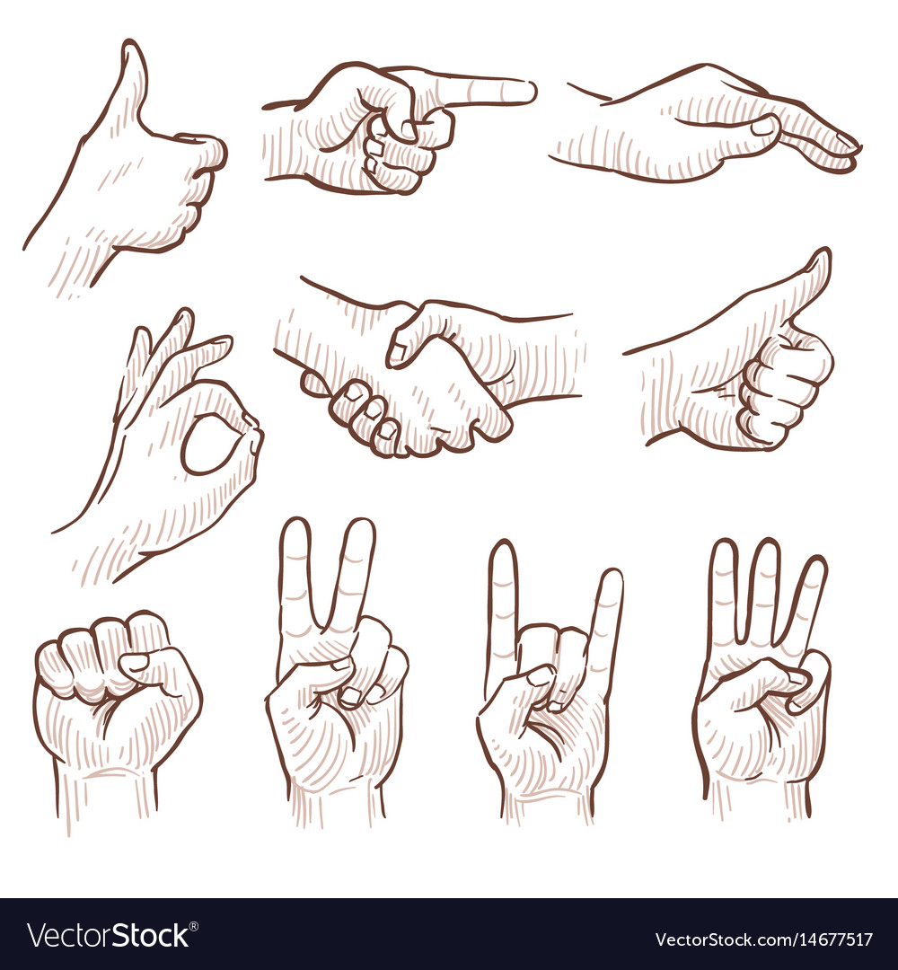 Hand drawing sketch man hands showing different vector image